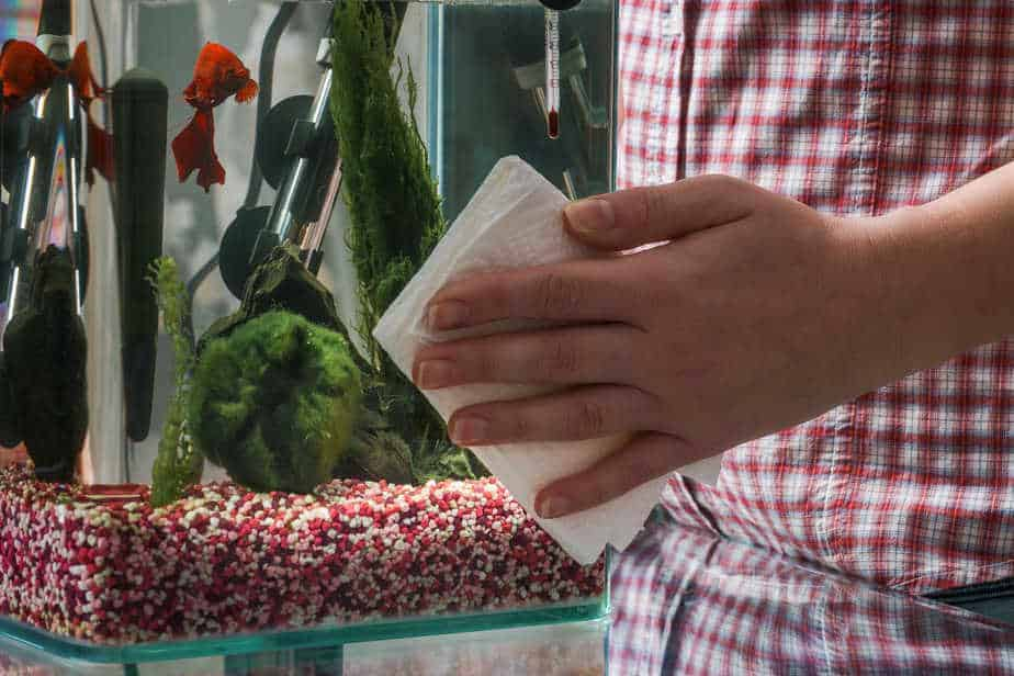 Can You Use Vinegar To Clean an Aquarium – Is It Fish Proof