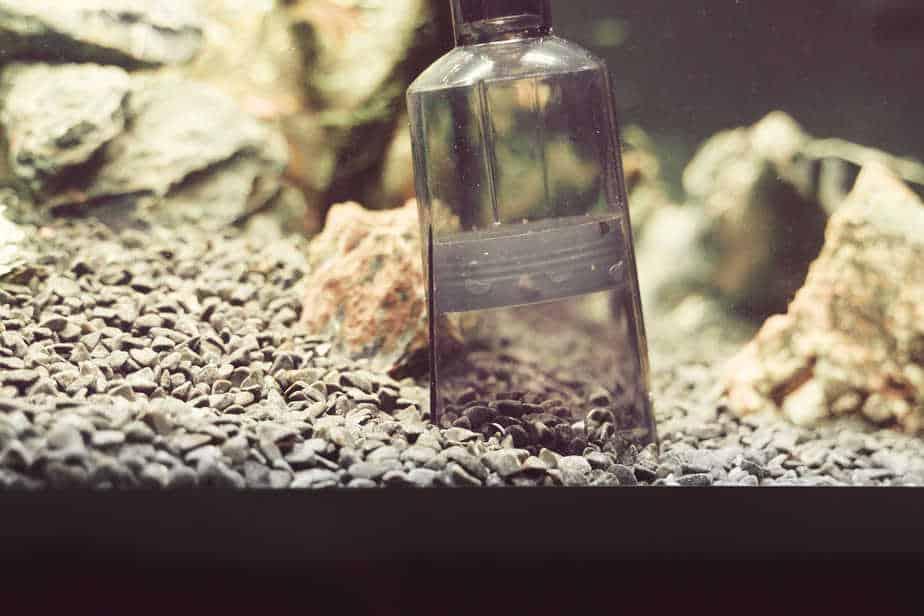 How To Clean Fish Tank Gravel in 3 Easy Steps (Low Effort)